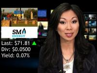 Daily Dividend Report:  AT, SM, LNT, HPT, NNN