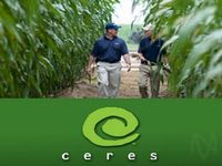 Thursday Sector Leaders: Agriculture & Farm Products, Television & Radio Stocks