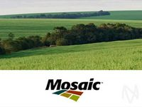 Mosaic Buys Phosphate Business From CF Industries