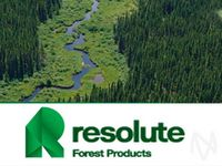 Thursday Sector Leaders: Paper & Forest Products, Rental, Leasing, & Royalty Stocks
