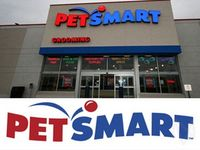 S&P 500 Movers: PEG, PETM