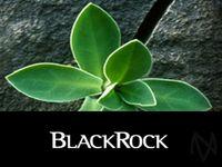BlackRock Shares Higher After Earnings Beat